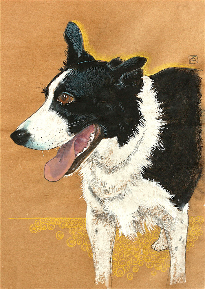 mixed media drawing of a border collie called Alfie