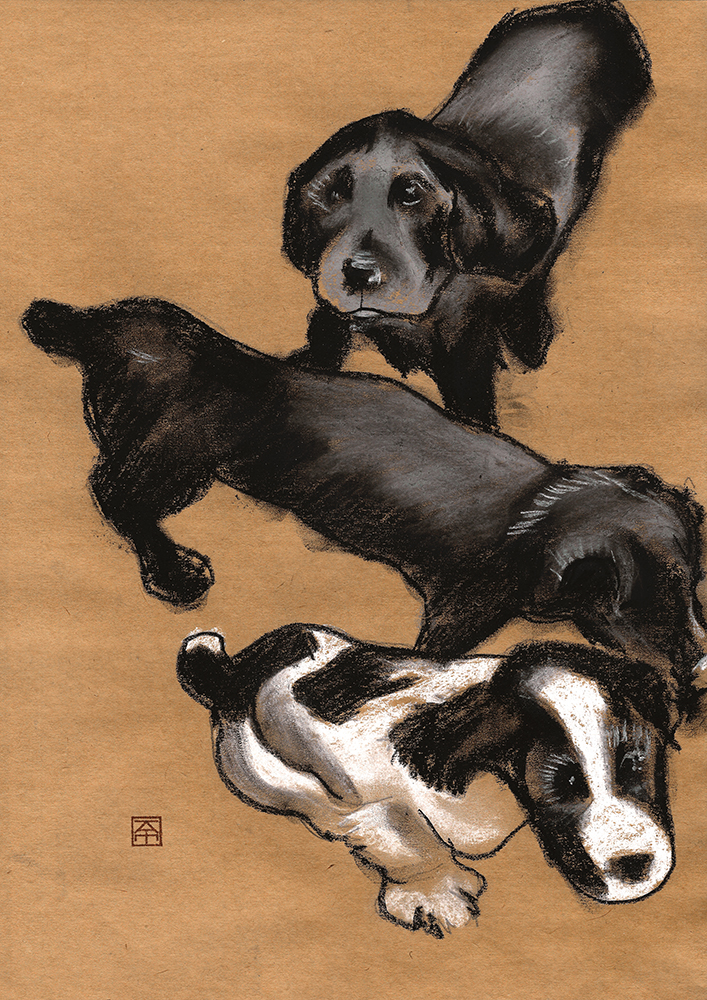 pastel drawing of 3 spaniel puppes
